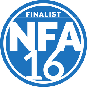 National Fenestration Awards - Best Aluminium Company 2016 - 2nd time Finalist